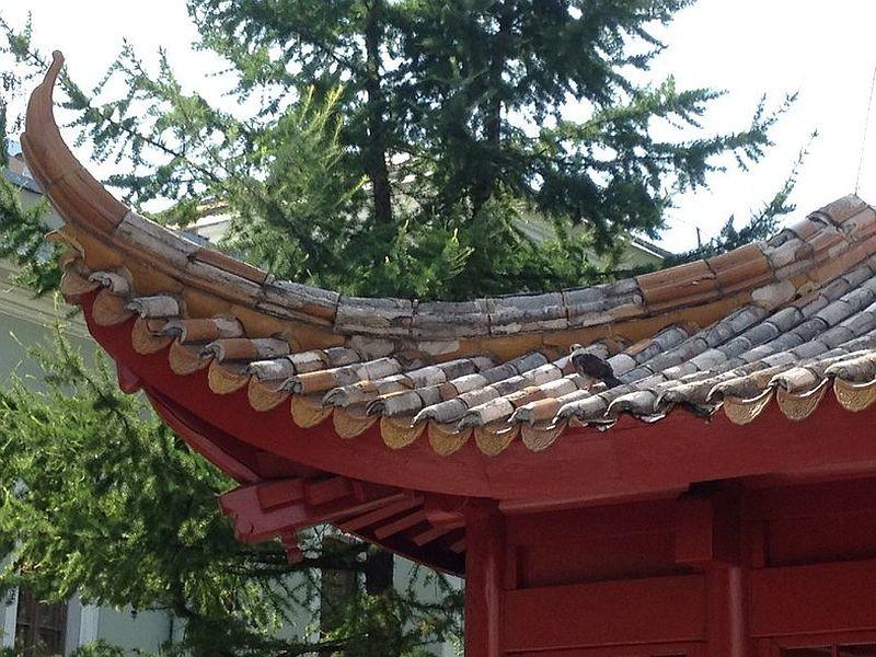 Разрушения шамота на крыше пагоды в саду Дружбы народов в СПб