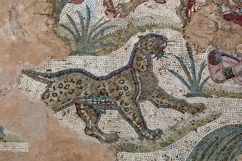 Мозаики терм Антонина Пия в Карфагене